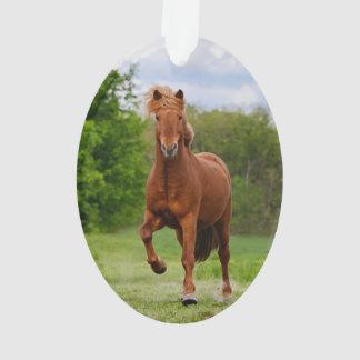 Icelandic Pony runs Tölt Funny Photo Horse Lovers Ornament