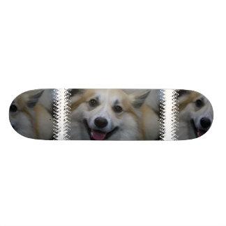 Icelandic Sheepdog Skateboard