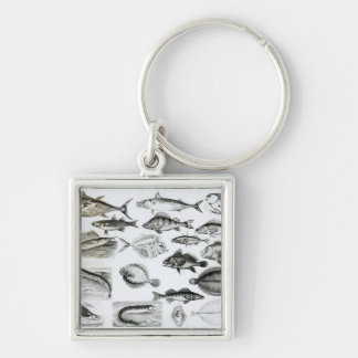 Ichthyology Osseous Fishes Keychain
