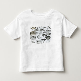 Ichthyology Osseous Fishes Toddler T-Shirt