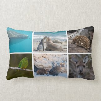 Iconic Australian Animals Lumbar Cushion