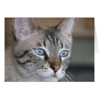 Icy blue eyes card