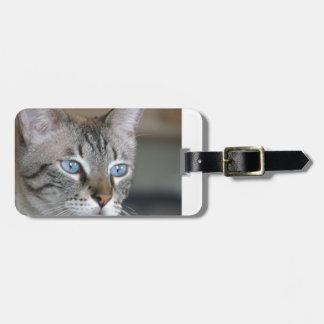 Icy blue eyes luggage tag