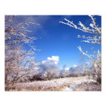 Icy Blue Sky Photographic Print