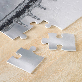 Icy Branch Puzzle