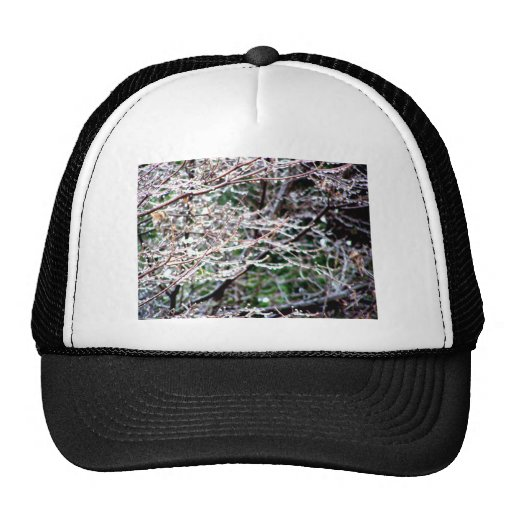 Icy Dogwood Mesh Hat