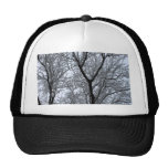 Icy Tree Trucker Hat
