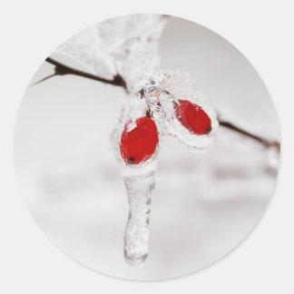 Icy Winter Berries Round Sticker