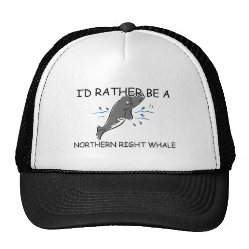 I'd Rather Be A Northern Right Whale Trucker Hats