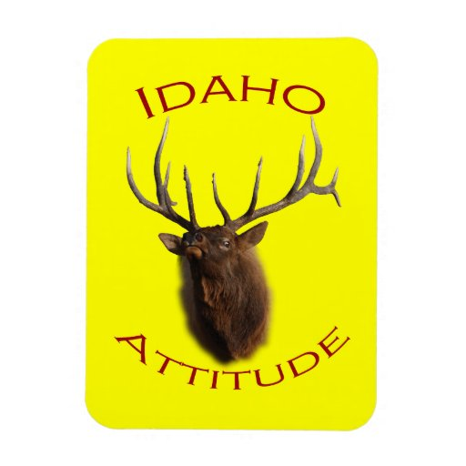 Idaho Attitude Vinyl Magnet