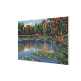 Idaho Lake Scene with Lily PadsIdaho Canvas Print