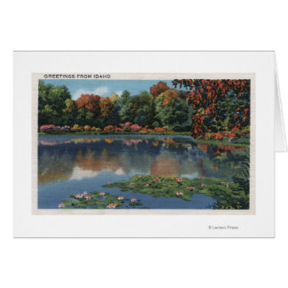 Idaho Lake Scene with Lily PadsIdaho Card