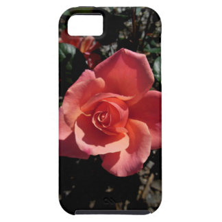 Idaho Rose iPhone 5 Cover