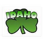 Idaho Shamrock Postcard