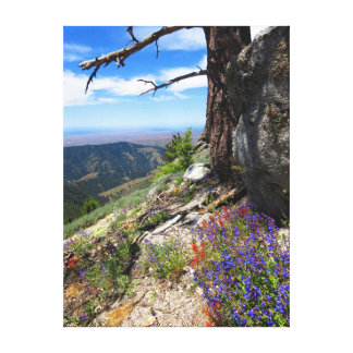 Idaho Wild Flowers Canvas Print