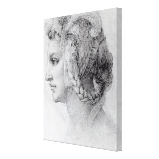 Ideal Head of a Woman, c.1525-28 Canvas Print