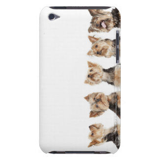 Identical dogs sitting together iPod touch Case-Mate case