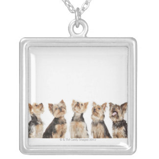 Identical dogs sitting together silver plated necklace