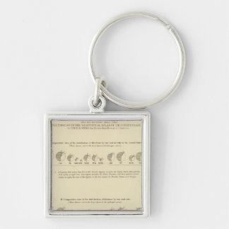 Idiots, Statistical US Lithograph 1870 Key Ring