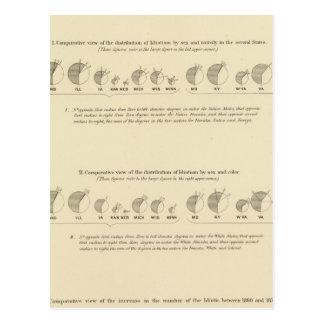 Idiots, Statistical US Lithograph 1870 Postcard
