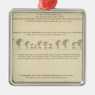 Idiots, Statistical US Lithograph 1870 Silver-Colored Square Decoration