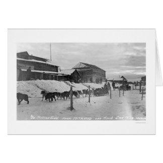 Iditarod Alaska Birdseye 1914 Cards