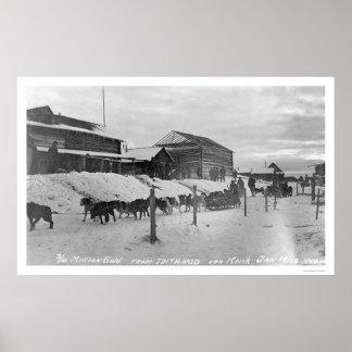Iditarod Alaska Birdseye 1914 Print