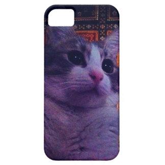 iDiva iPhone 5 Case