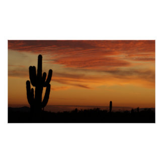 IDKP Arizona cactus in the sunset Poster