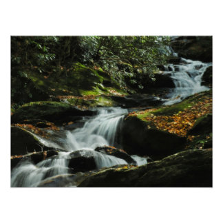 Idyllic Waterfall Photo Poster