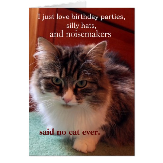 If Cats Could talk Birthday Card