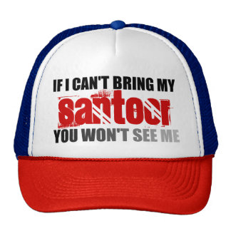 If I Can't Bring My Santoor You Won't See Me Cap