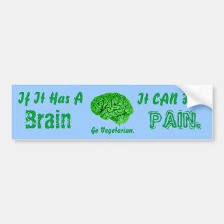 If It Has a Brain, It Can Feel Pain. Go Vegetarian Bumper Sticker