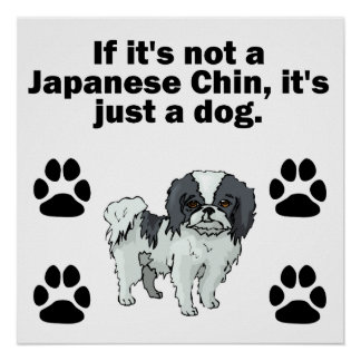 If It's Not A Japanese Chin Poster