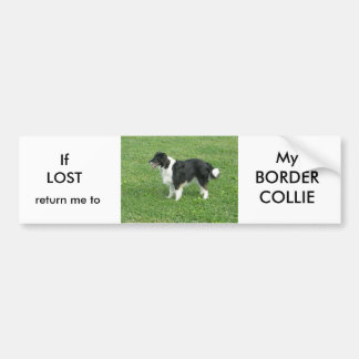 If LOST return me to My BORDER COLLIE Bumper Sticker