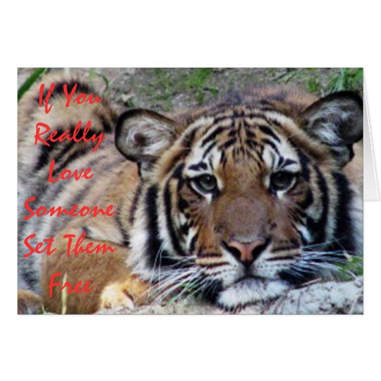 If You Love Someone Beautiful Tiger Card