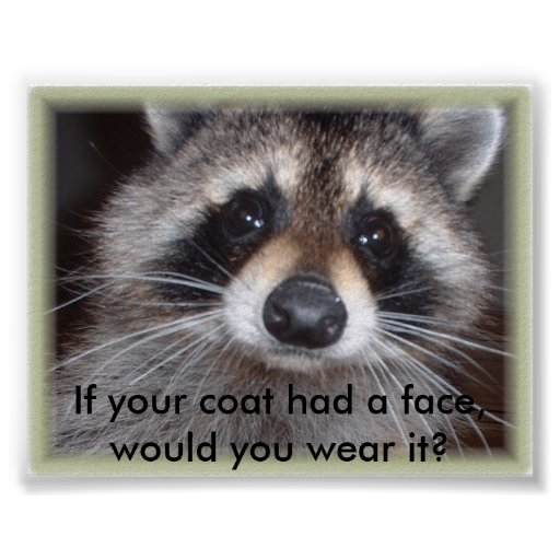 If your coat had a face, would you we... poster
