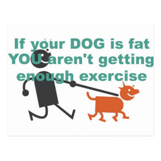 If your dog is fat... postcard