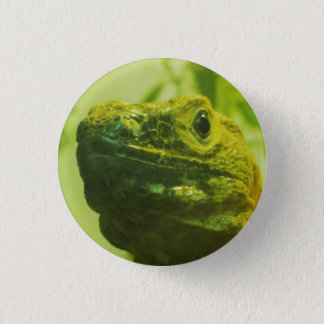 Iggy Button