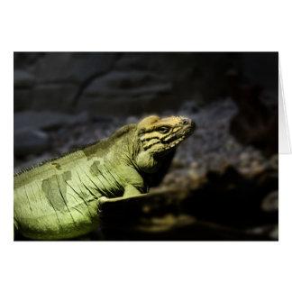 Iguana Card