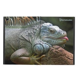 Iguana cases