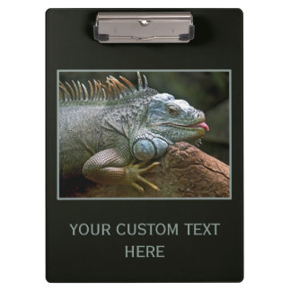 Iguana custom clipboard