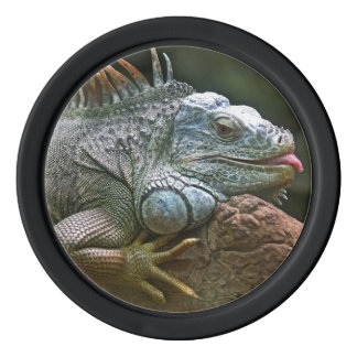 Iguana custom poker chips