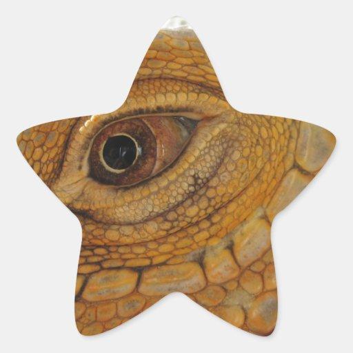 Iguana Eye Star Stickers
