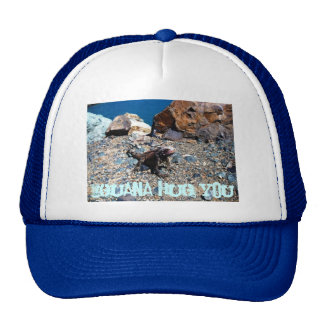 Iguana Hug You hat