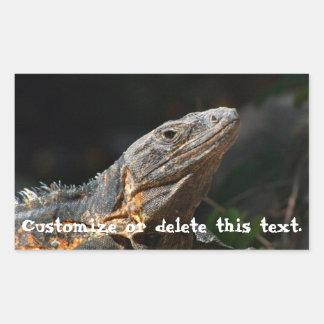 Iguana in the Sun; Customizable Stickers