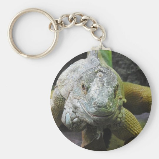 Iguana Key Ring Basic Round Button Key Ring