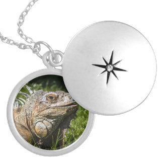 Iguana Lizard Silver Plated Necklace