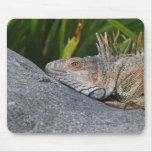 Iguana Mousepad