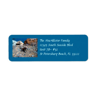 Iguana Return Address Labels